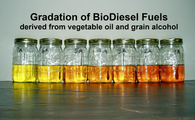 BioDiesel Fuels